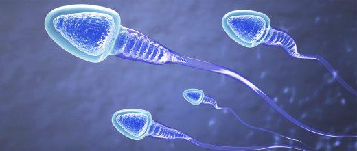 Faire appel à un donneur de sperme