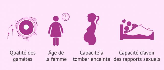 Imagen: Spermatozoïdes vers l'ovule