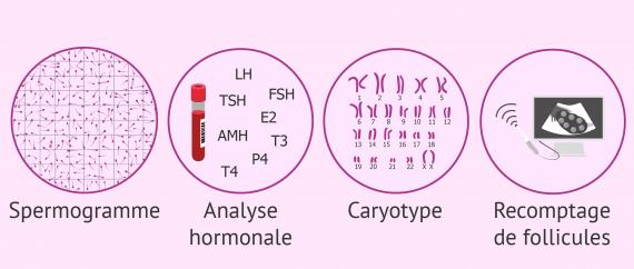 Examens du bilan de fertilité