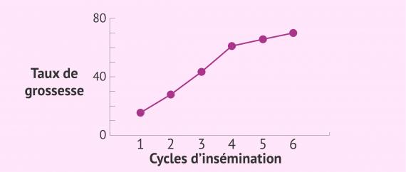 Taux de grossesse lors d'une insémination artificielle