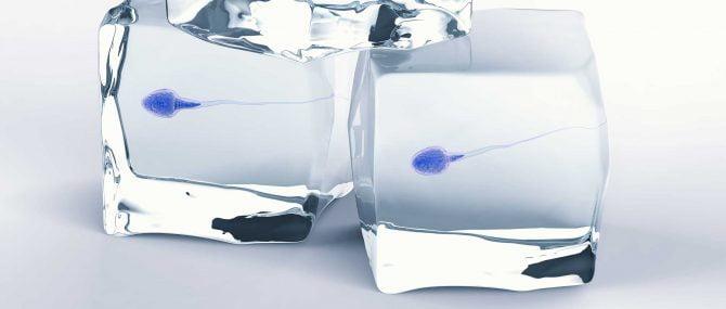 La congélation de sperme