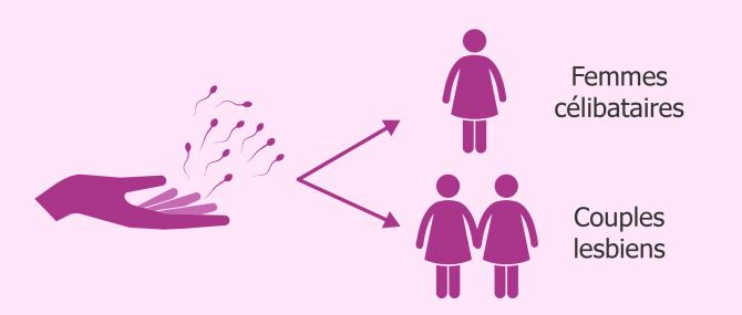 Don de sperme pour femmes sans partenaire masculin