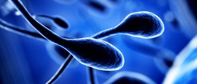 Recourir à un don de sperme pour concevoir un enfant