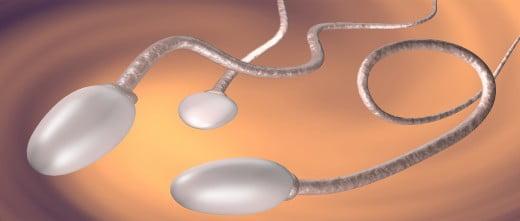 Mauvaise qualité du sperme