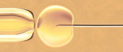 Procréation assistée en Espagne