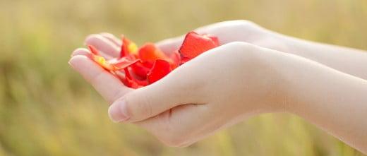 Traitement de don d'ovocytes à Chypre