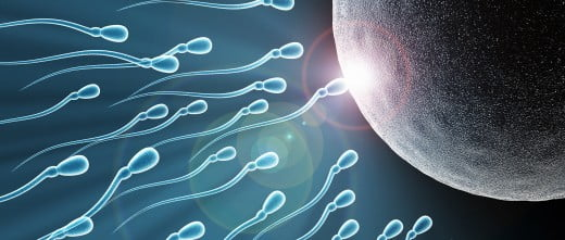 FIV avec don de sperme anonyme