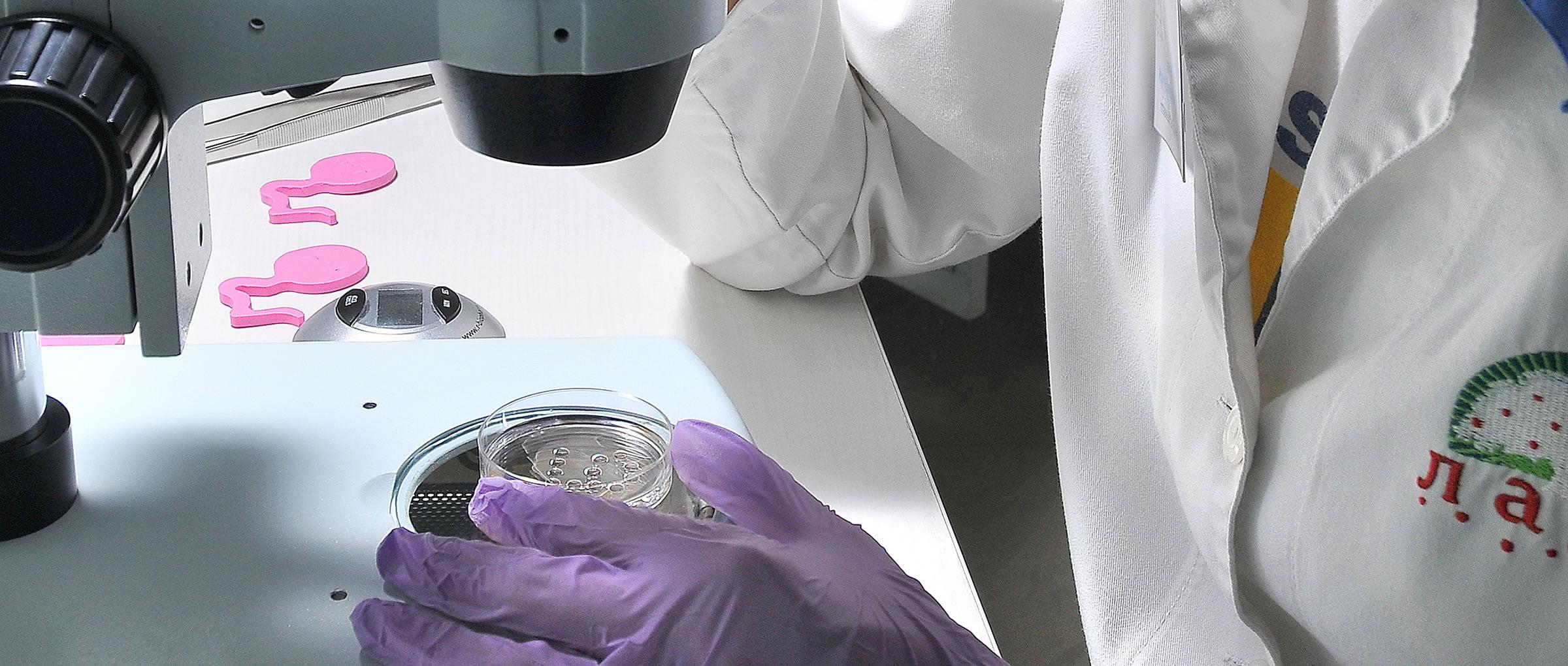 LADA laboratoire de FIV
