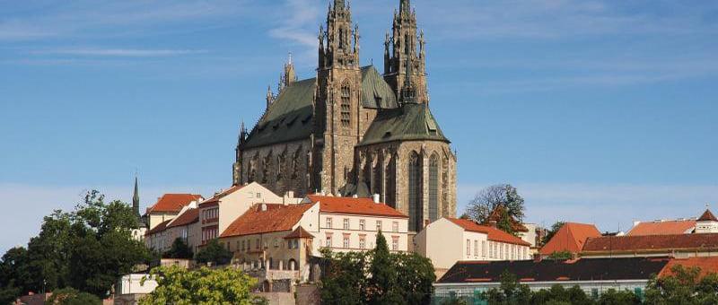 ReprogGenesis Brno République tchèque