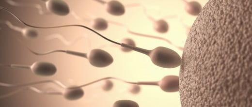 Villes grecques pour procréation assistée
