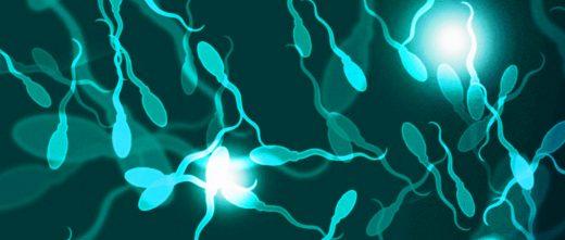 IA avec don de sperme
