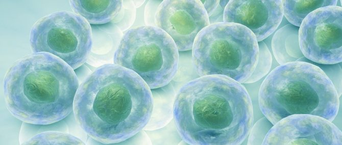 Impossibilité d'utiliser ses propres ovocytes