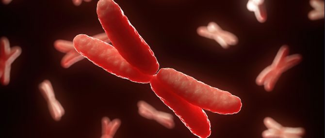 DPI pour transférer des embryons sains