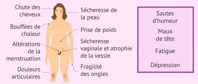 Symptômes de la ménopause et du climatère