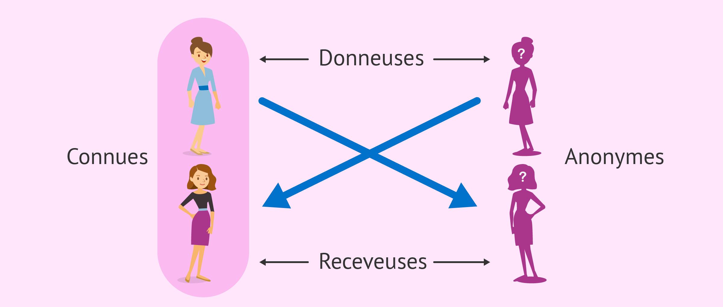Le don relationnel croisé