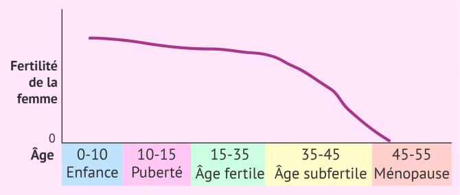 Fertilité de la femme selon l'âge