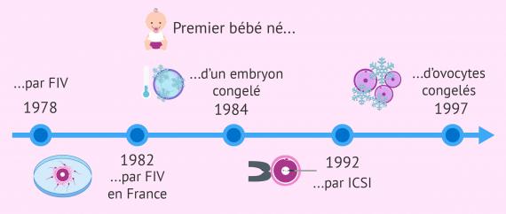 Histoire de la PMA