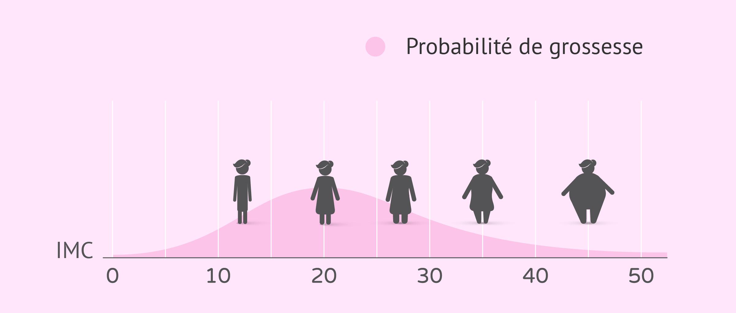 Probabilité de grossesse en fonction de l'IMC