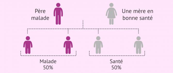 Imagen: Hérédité des maladies autosomiques dominantes
