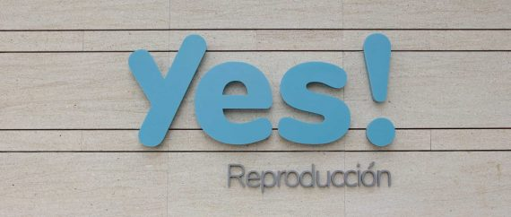 Yes-Reproduccion-2