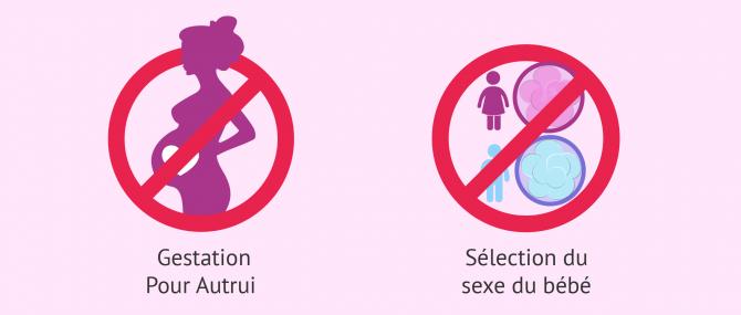 Imagen: PMA Espagne Gestation pour autrui et sélection du sexe