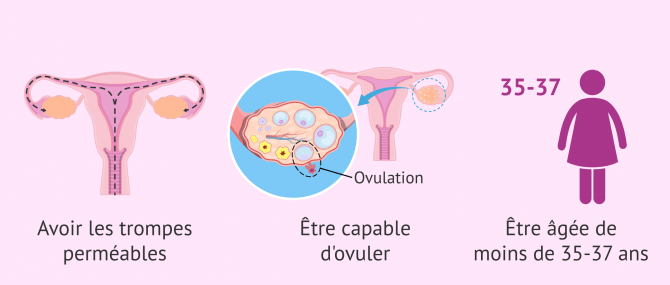 Imagen: indications pour insemination artificielle