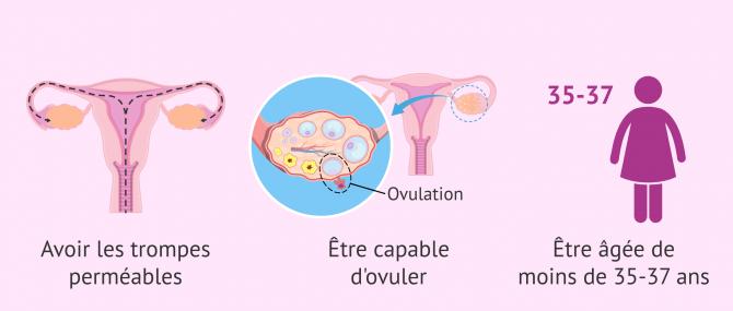 Imagen: indications pour insemination artificielle