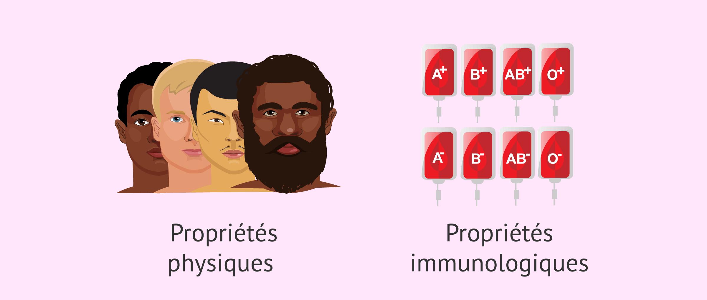 Choisir le donneur de sperme