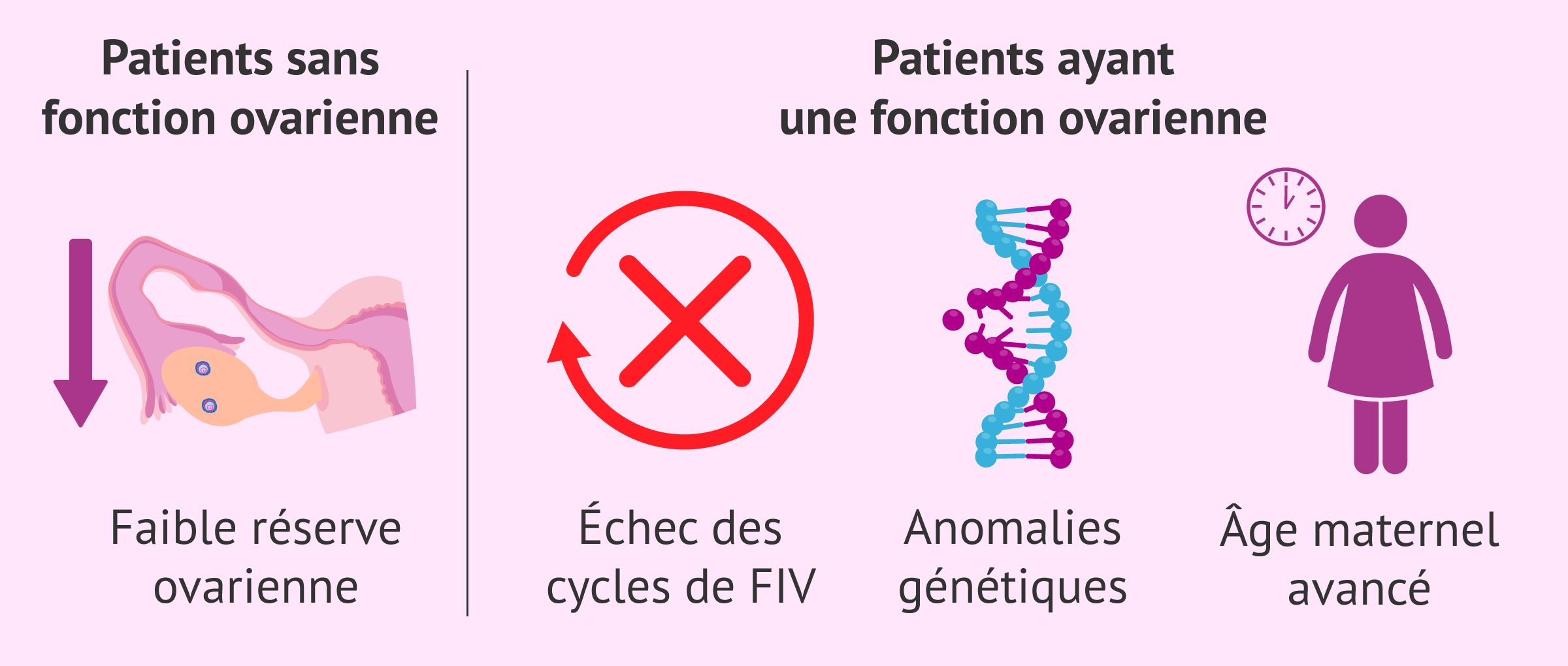Indications pour le don d'ovules