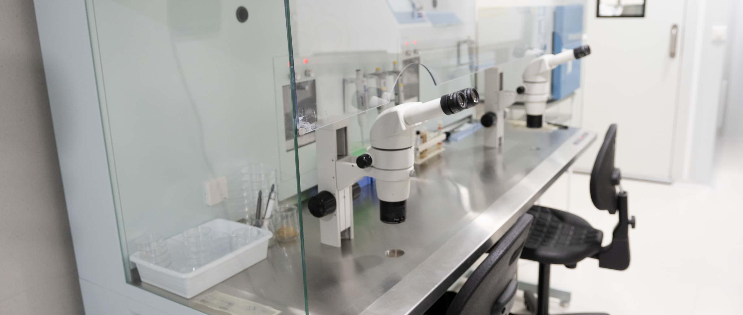 Imagen: Cabine à flux laminaire IVF Spain Madrid