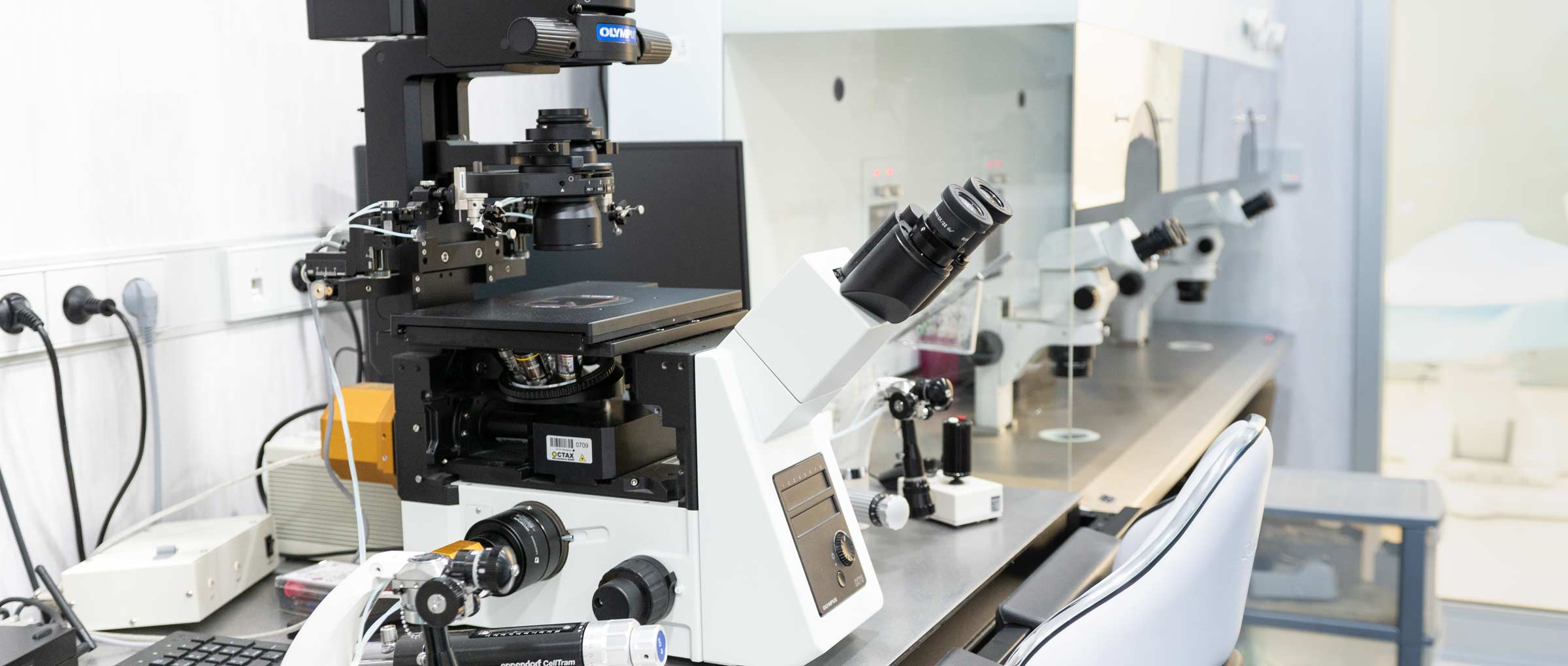 Imagen: Laboratoire de Fertility Madrid
