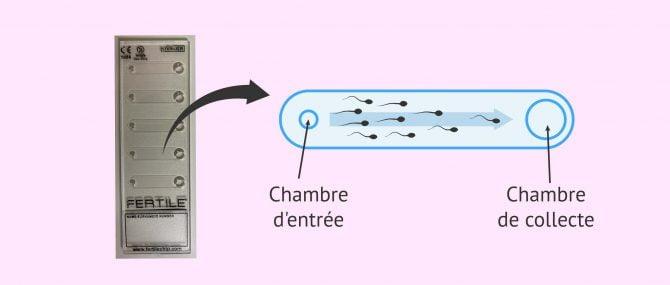 Imagen: Dispositif Chip Fertile