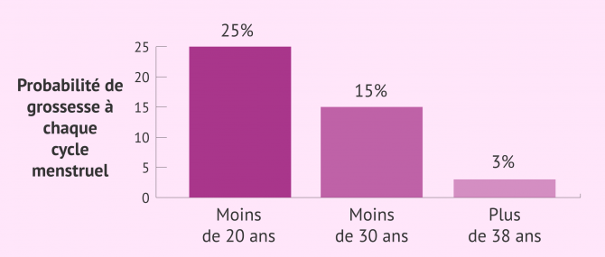 Imagen: Possibilité de grossesse par cycle menstruel